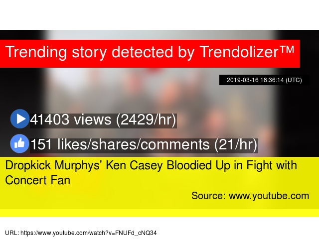Dropkick Murphys' Ken Casey Bloodied Up in Fight with